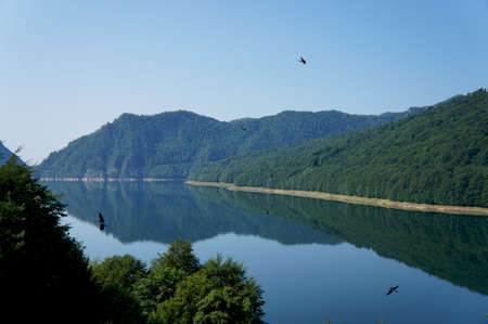 Panorama view of the Vidraru lake in Fagaras mountains of Romania with black swallows flying over the water