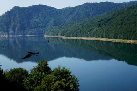 Panorama view of the Vidraru lake in Fagaras mountains of Romania with black swallows flying over the water photo