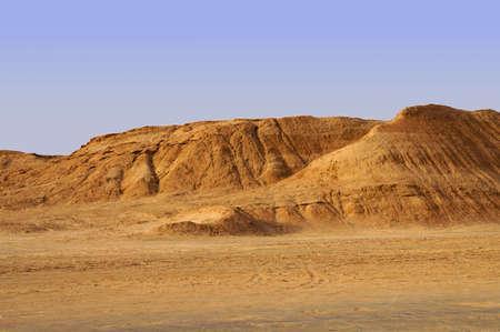 desert vegetation: Panoramic view of sand dunes in the Sahara desert of Tunisia Stock Photo