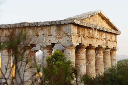 segesta: View of the greek temple in Segesta in Sicily through the vegetation of the site