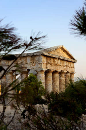 View of the greek temple in Segesta in Sicily through the vegetation of the site photo