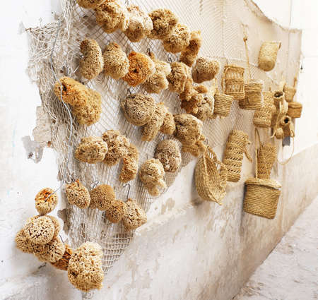 Natural sponges on sale in a street of the medina of Sousse photo