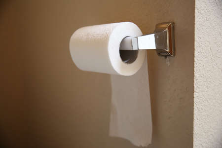Toilet paper roll photo