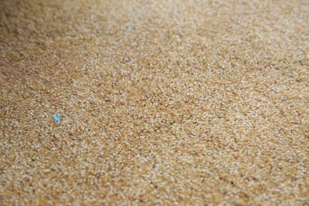 Dirty brown carpet Stock Photo