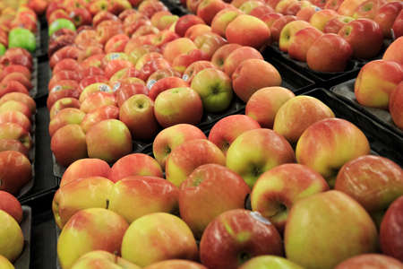 Many apples in the store
