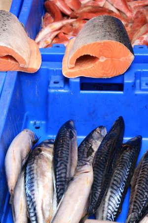 市場の新鮮な魚