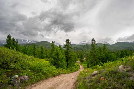 aktru: trail in the mountains. Summer Altay, Aktru