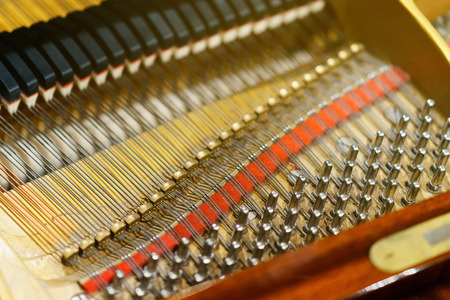gutted: the inner mechanism of the piano piano.