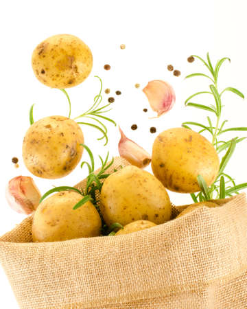 falling out: Fresh ripe potatoes falling out of the burlap sack with rosemary