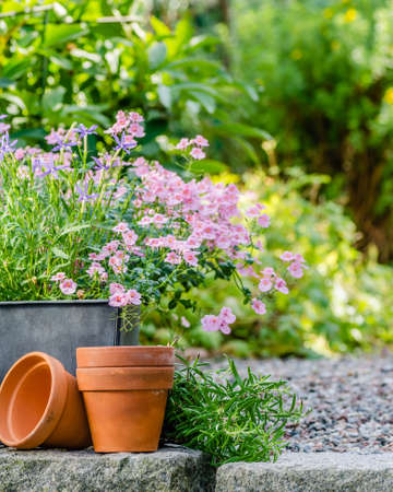 Cottage Garden Pots Cottage garden beautiful flowers in pots stock photo picture and cottage garden beautiful flowers in pots stock photo 90224056 workwithnaturefo
