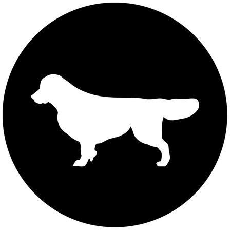 og breed Golden Retriever on black and white squares and round . it seems like chess board. all objects are isolated and you can move they. Dog breed vector black silhouette. Dog breed black icons isolated on white background. Dog breed black vector icon