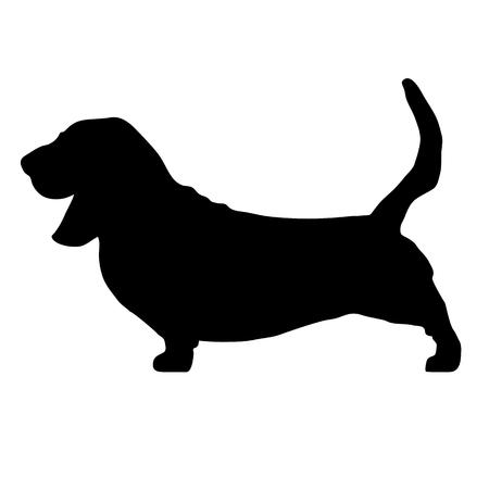 Basset-Jagdhundzucht Basset-Jagdhund. Hunderasse Vektor schwarz Silhouette. Schwarze Ikonen der Hunderasse lokalisiert auf weißem Hintergrund. Vektor-Ikonenillustration der Hunderasse schwarze. Hunderasse schwarzes Schattenbild lokalisierter Vektor. Flache Silhouette der Hunderasse. Standard-Bild - 79893033