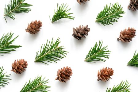 Bagout de Noël pour la conception. Branche de sapin et cône sur fond blanc. Banque d'images