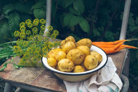Fresh root vegetables - potato and carrot on farm. Stock fotó
