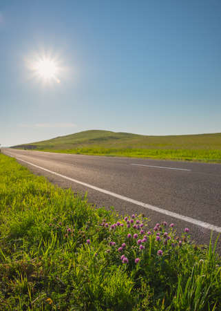 A small island with a deserted road clover flowers goes beyond the horizon