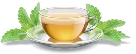 Tea cup with stevia leaves illustration Stock Photo