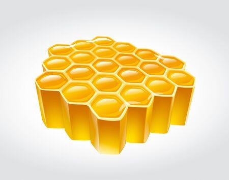 honeyed: Honey  illustration