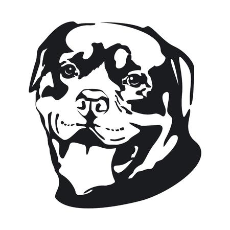 dog: Dog. Rottweiler.