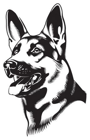 犬。羊飼い