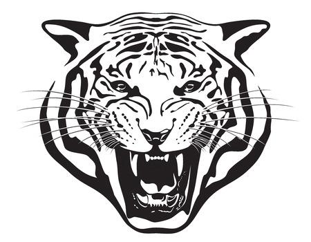 Tiger Head illustration Banque d'images - 71941900