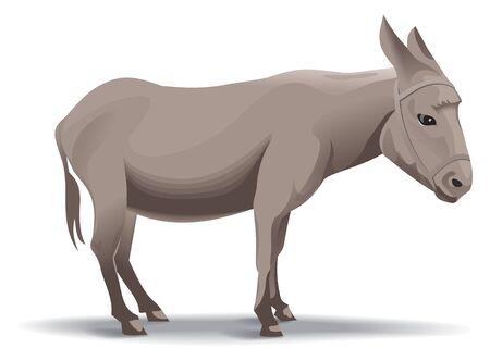 voyager: donkey