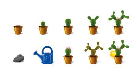 sere: cactus