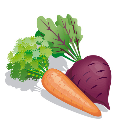 Carrot and beet