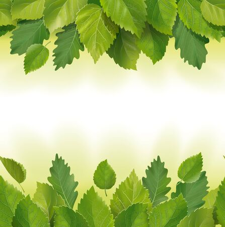 Composition of the leaves. seamless Stock Photo