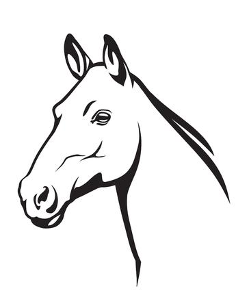 paardenkop
