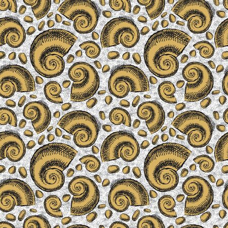 Endless background. The bottom of the ancient sea. Ammonites Foto de archivo - 134550388