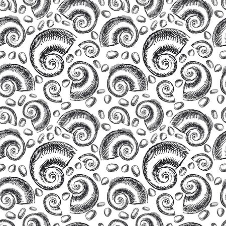 Endless background. The bottom of the ancient sea. Ammonites Foto de archivo - 134550480