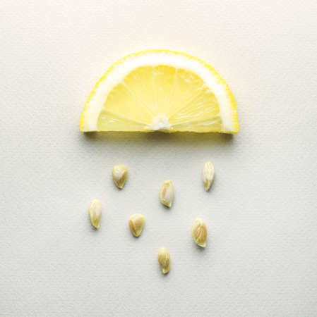 lemony: Creative concept photo of a lemon slice with seeds falling down on grey background.
