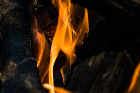 Bonfire with flames closeup. Abstract dark background of fire.