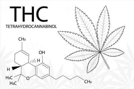Cannabis leaf of Indica with formula tetrahydrocannabinol. Medical marijuana. Simple form, for graphic design of logo, emblem, sign, badge, label. Logo