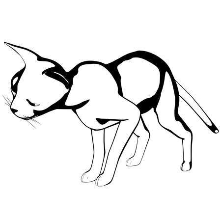 Cat sketch on a white background. Sphynx silhouette vector, pet illustration