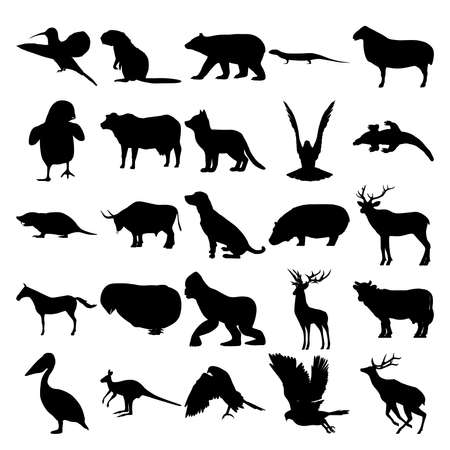 Set of 25 animals. Colibri, Beaver, Bear, Lizard, Sheep, Fox, Crow, Komodo Dragon, Mole, Bull, Dog, Hippo, Elk, Zebra, Chick, Gorilla, Cow, Pelican, Kangaroo, Goshawk, Deer.