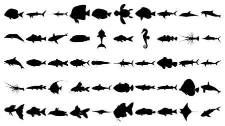 Vector set of 50 various fish and sea animals silhouettes.