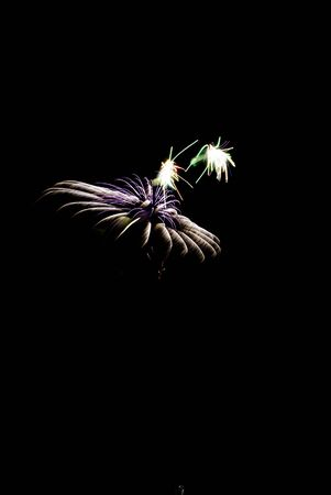 An amazing display of fireworks on fourth of July. Stock Photo