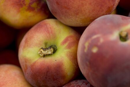 yellows: Beautiful peaches outside on a summer day. Stock Photo
