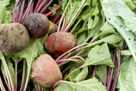 Red raw beets piled high at a market. 免版税图像