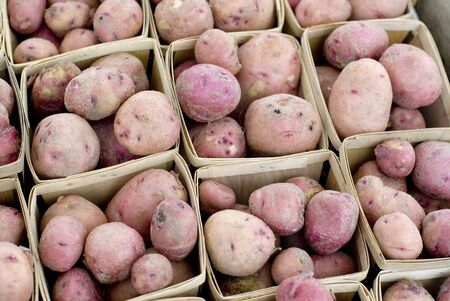 Fresh red skinned potatoes for sale.