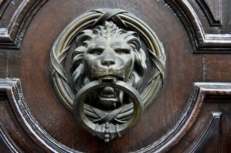 A Lion knocker on a stained door. photo