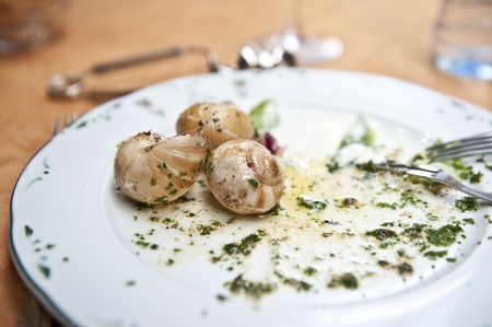 맛있는 달팽이 요리의 거의 완성 된 접시. 스톡 콘텐츠