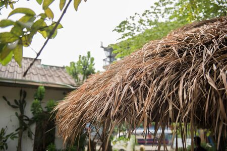 river banks: Roof of a thatched hut in Vang Vieng, Laos on a sunny day. Most houses on the Nam Song river banks are thatched huts. On the background, another residence and trees are seen. Stock Photo