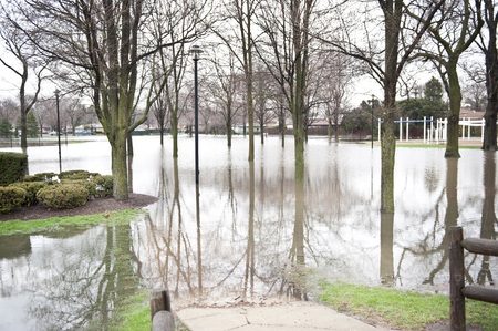 arbol de problemas: A flooded park underwater in the Chicago area on a cloudy day. Foto de archivo