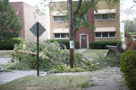 arbol de problemas: Un camión retirar roto ramas caídas en el lado de la carretera. Foto de archivo