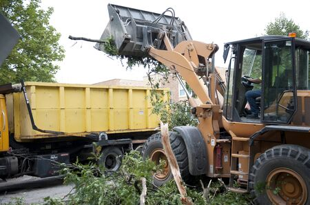 A truck removing broken fallen branches on the side of the road. 免版税图像
