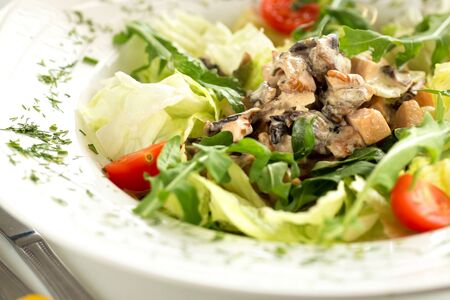 Delicious colorful salad with chicken, tomatoes and arugula Фото со стока