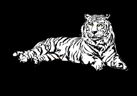 Siberian tiger Stock Vector - 9935145