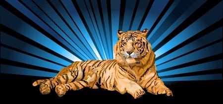 Siberian tiger and Northern Lights Illustration